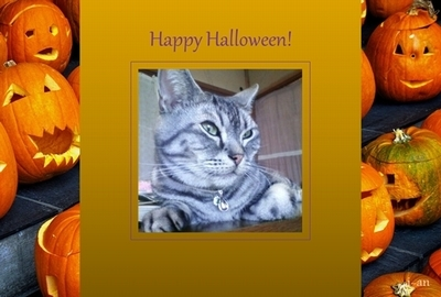 Halloween2-sample.jpg