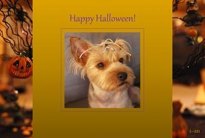Halloween1-sample.jpg